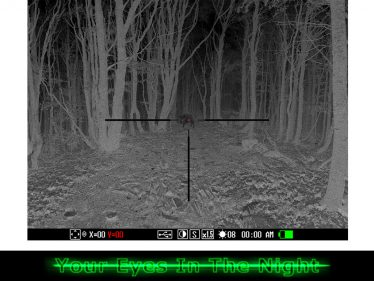 digital night vision vildsvine jagt sverige